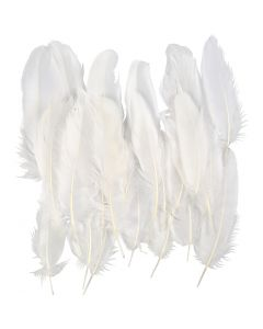 Feathers, white, 350 pc/ 1 pack