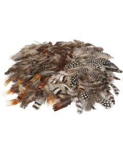 Natural Feathers, 6 pack/ 1 pack