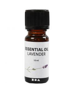 Fragrance oil, Lavender, 10 ml, 10 ml/ 1 bottle