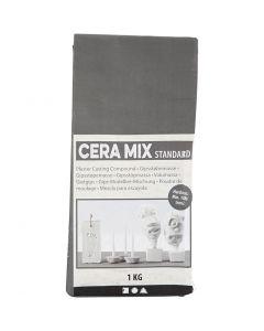 Cera-Mix Standard Casting Plaster, light grey, 1 kg
