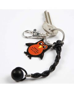 A Keyring with a Leather Cord