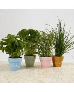 Decorated Pots for Herbs