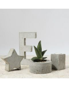 Home Interiors from cast Concrete