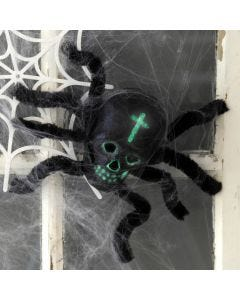 A Spider made from a Skull and Pipe Cleaners for Halloween Decoration
