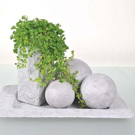 Objects painted with concrete paste