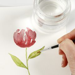How to paint watercolours using lifting techniques