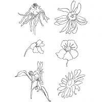 Clear Stamps, summer, 11x15,5 cm, 1 sheet