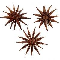 Star anise, D: 15-20 mm, 250 g/ 1 pack