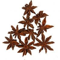 Star anise, 10 pc/ 1 pack