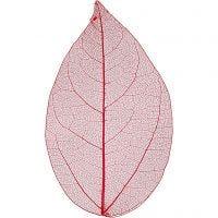 Skeleton leaves, L: 6-8 cm, red, 20 pc/ 1 pack