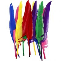 Feathers, L: 27 cm, assorted colours, 12 pc/ 1 pack