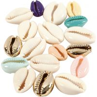 Shell, L: 20 mm, assorted colours, 75 pc/ 1 pack