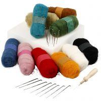 Needle Felting - Starter Kit, assorted colours, 1 set