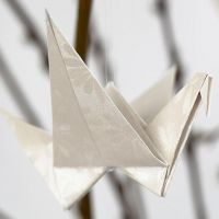 A Bird folded from Paper
