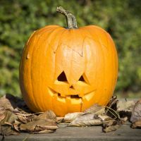 A scooped-out Pumpkin decorated with a cut-out Face
